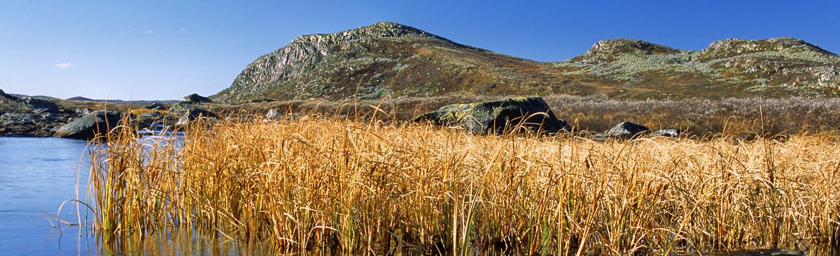 Foto © Anders Gjengedal - Visitnorway.com